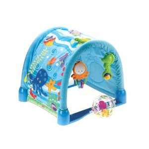 Fisher-Price Ocean Wonders Kick and Crawl Gym at Sears.com